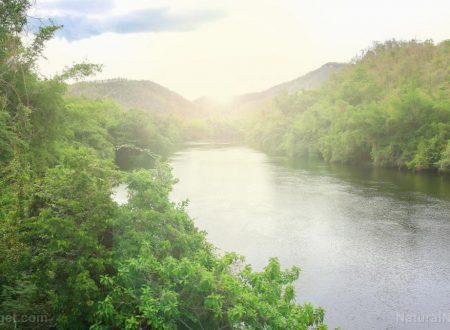 Studio: gli antibiotici stanno distruggendo i fiumi del mondo