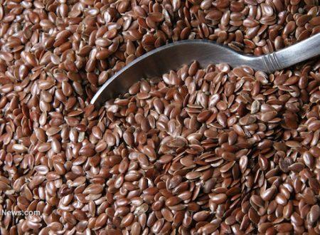 I semi di lino possono migliorare la salute dell'intestino e aiutarti a perdere peso?